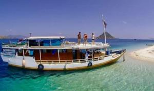 Boat Type & Specification from Komodo Boat Trip