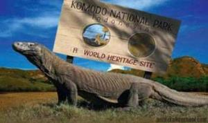 History of Florest Island And Komodo National Park