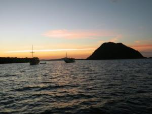 10 Days Trip - Flores and Komodo Island Tours