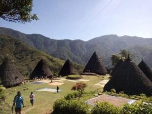5 Days Trip - Wae Rebo Village and Komodo Island Tours